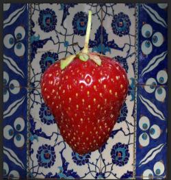 Final strawberry